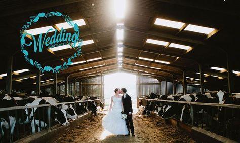 Wedding in a Barn? YES!