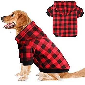 Pin On Dogs Apparel And Accessories