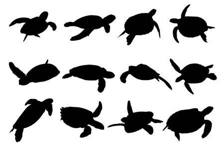 Collection Of Turtle Vector Silhouettes Turtle Silhouette Turtle Art Sea Turtle Tattoo