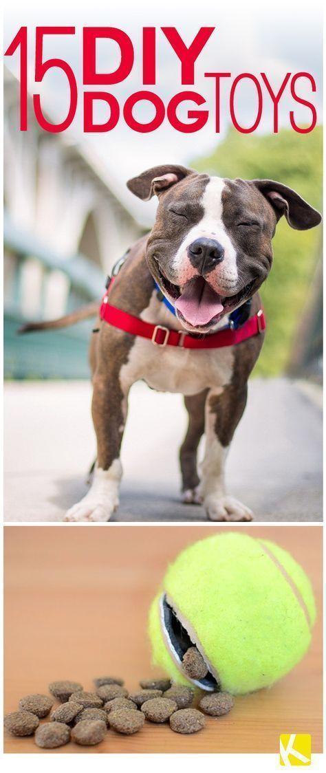15 Diy Dog Toys Anyone Can Make Diy Dog Toys Interactive Dog