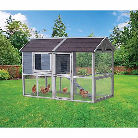 Innovation Pet Deluxe Farm House Chicken Coop Up To 8 Chickens At Tractor Supply Co Chicken Diy Diy Chicken Coop Chickens Backyard