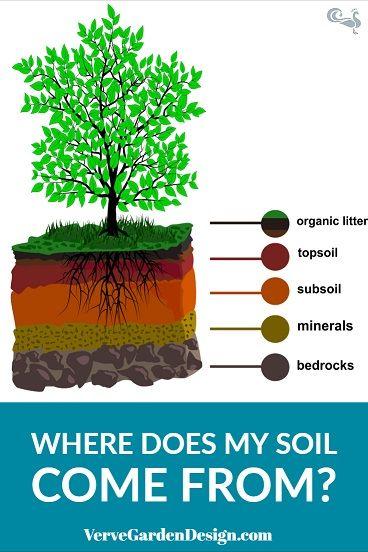 Garden Soil Basics Part 1