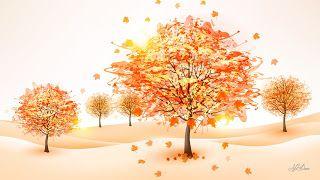 خلفيات روعة جدا للكمبيوتر Summer Wallpaper Cute Fall Wallpaper Fall Wallpaper Autumn Trees