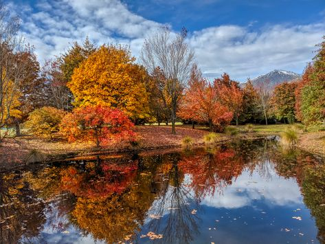 Here's a photo I took today on my daily walk... The Autumn colors around here are really starting to pop... I have a good audiobook I'm listening too also which makes the walks even more enjoyable. Tomorrow I'll see if I can keep it going for 4+ hours! #TreyRatcliff #NewZealand #Autumn #Fall