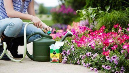 bd26d4b6ba7bf9efbbe1a384e0593bfa - Simple Essay On My Hobby Gardening
