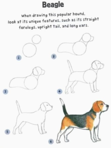 19+ Cute Dogs Drawing Ideas