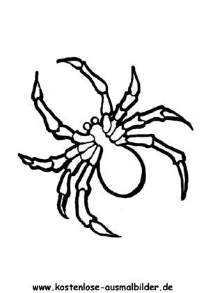 Spinne Ausmalbilder Ausmalbilder Spinne Ausmalbilder Ausmalen Malvorlagen