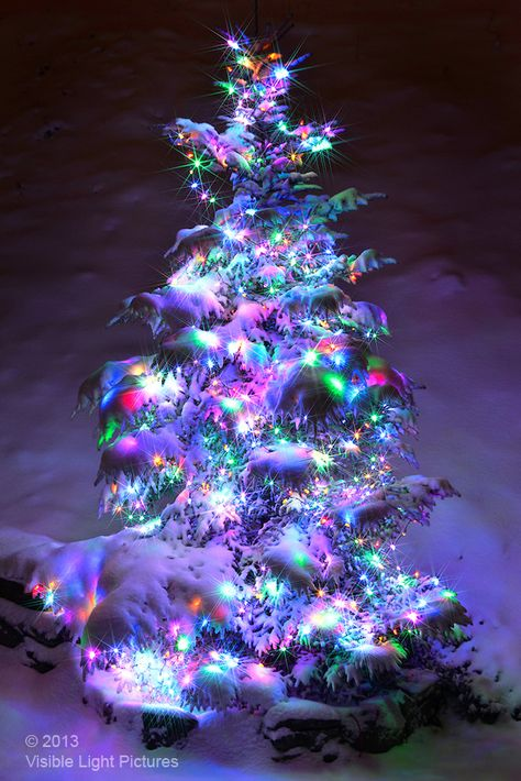 Christmas tree decorated with lights after a snowfall. Christmas Scenery, Purple Christmas, Beautiful Christmas Trees, Christmas Mood, Noel Christmas, Outdoor Christmas, Christmas Pictures, Vintage Christmas, Christmas Lights