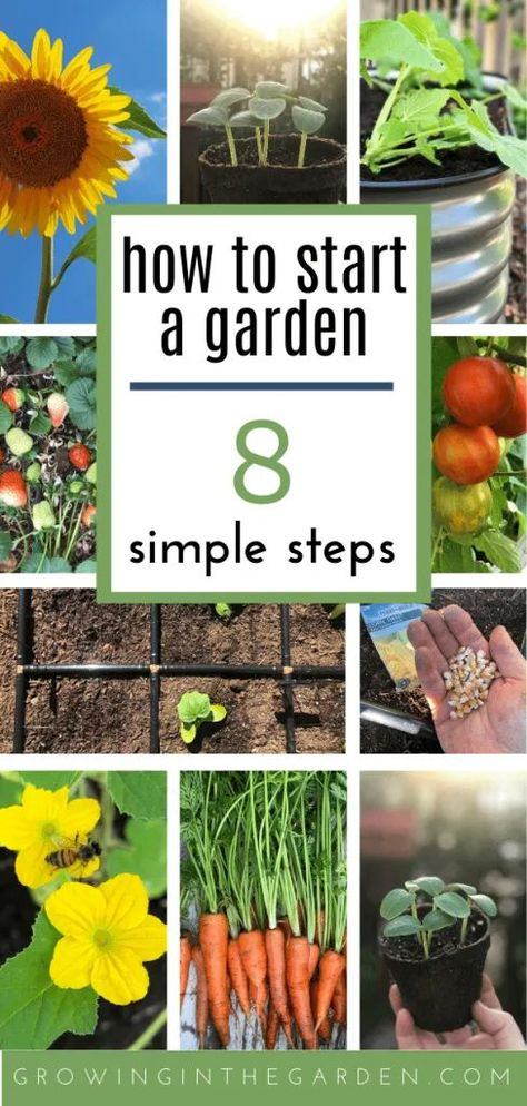 Gardening for Beginners: How to Start a Garden in 8 Simple Steps | Growing In The Garden