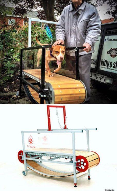 Firepaw Dog Treadmill Dog Treadmill Dog Training Equipment Dog