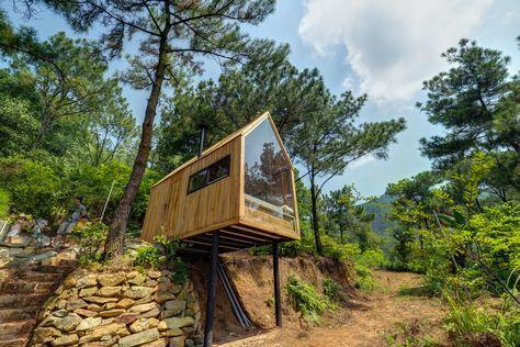 Gallery Of Forest House Chu Văn đong 13 Cite Lacustre Maison Dans La Foret Et Belle Maison