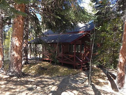 cabins friendly colorado vacation property steamboat dog rental pet springs rentals browse in