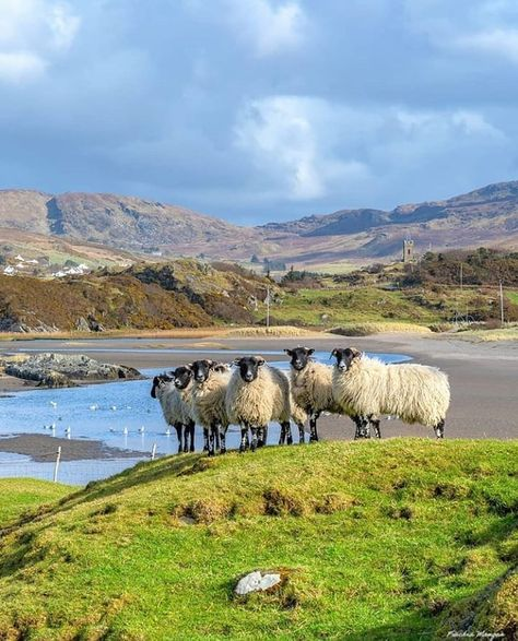 "Postcard from Ireland 🇮🇪 on Instagram: ""Glencolumbkille, Co. Donegal Photo Credit: @fiac_mangan  #glencolumbkille #donegal #countydonegal #visitdonegal #lovedonegal…"""