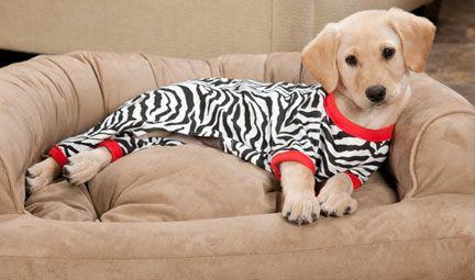 Puppies pajamas