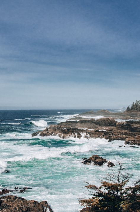 The Wild Pacific Trail in Ucluelet, BC - The Driftwoods Family