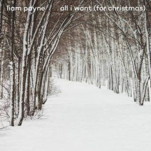 Download Mp3 Liam Payne All I Want For Christmas Liampayne Download Mp3 Liam Payne All I Want For Christmas All I Want For Christmas One Direction