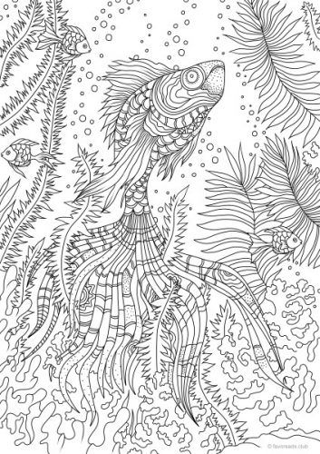 Ocean Life - Stunning Fish - Printable Adult Coloring Pages from Favoreads