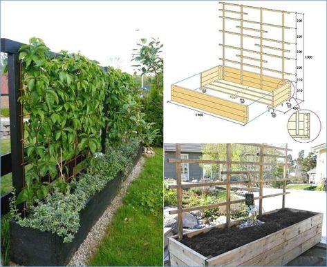 43 Inspirierend Mobiler Sichtschutz Garten Mit Bildern Sichtschutz Garten Sichtschutz Pflanzen