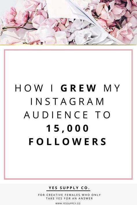 How I Grew My Instagram Audience To 15,000 Followers