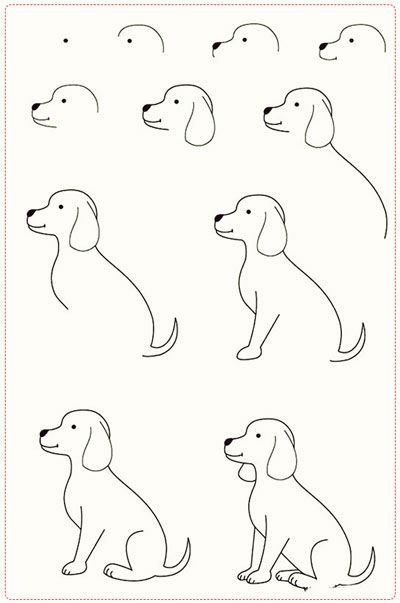 Amazing Easy Drawing Ideas Archive Dog Drawing Tutorial Dog Drawing Simple Easy Drawing Steps