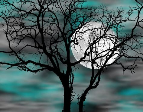 Teal Tree Moon Decor Teal Wall Pictures Teal by LittlePiePhotoArt