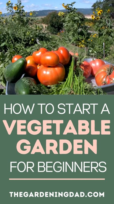 How to Start a Vegetable Garden for Beginners