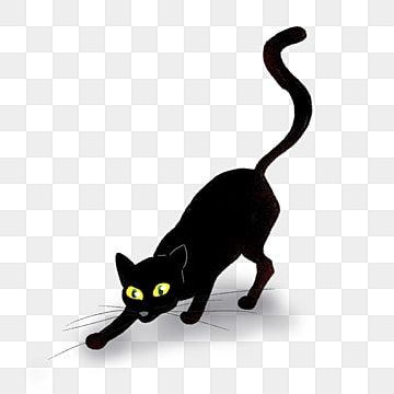 Black Cat Clipart Cat Clipart Png Transparent Clipart Image And Psd File For Free Download In 2021 Cat Clipart Cat Background Black Cat