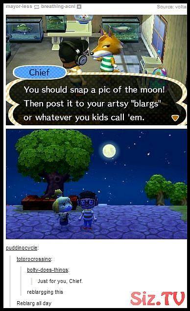 Artsy Blarg In 2020 Animal Crossing Animal Crossing Funny