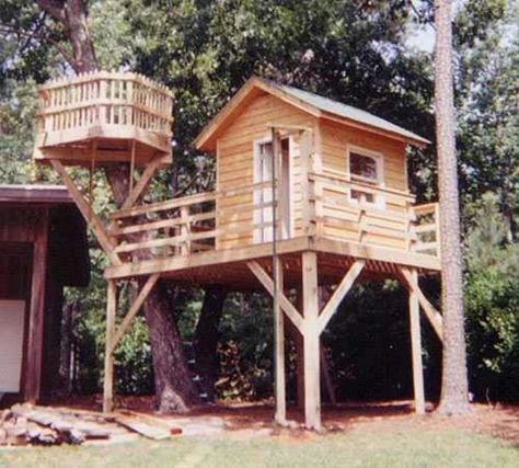 Tree Perch And Lookout Deck Ideas Adding Fun DIY Structures To - Group guys build epic treehouse gaming