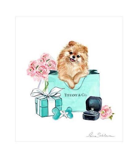 Pomeranian Pomeranian Dog Print Pomeranian Gift Pom Mom Etsy In 2020 Watercolor Paintings Of Animals Dog Print Pom Mom