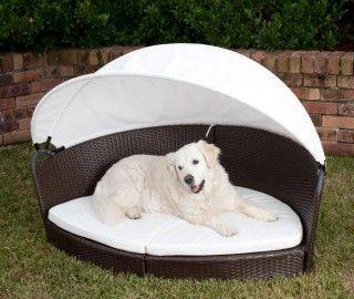 bdaadd6dd82a8d47cc02b9c22b10af48 canopy beds canopies