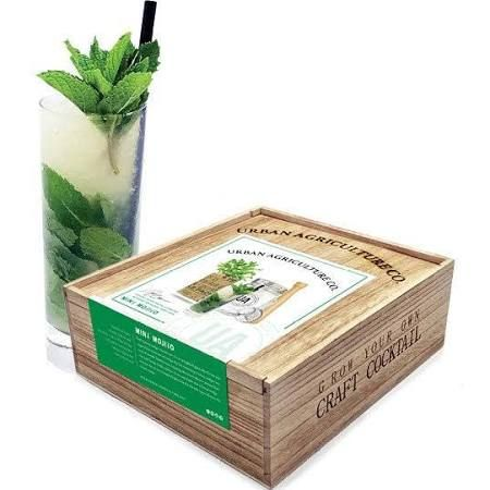 The Urban Agriculture Company Grow Your Own Mojito Cocktail Kit Cocktail Kits Mint Mojito Craft Cocktails