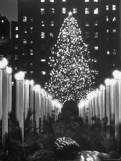 Rockefeller Christmas Tree 2020 Went Dark Rockefeller Center Christmas Tree at Night' Photographic Print