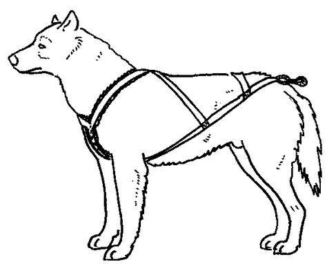 Mikki Walkrite Anti Pull Harness