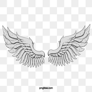 Free Download European Style Luxury Golden Wings Vector Elements Png Images Vector Golden Luxurious Vector Wings Png Angel Wings Png Angel Wings Pictures