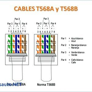 cat 5 wiring diagram pdf free wiring diagram   Computer network technology,  How to memorize things, Computer network   Splitter Cat 5 Wiring Diagram      Pinterest