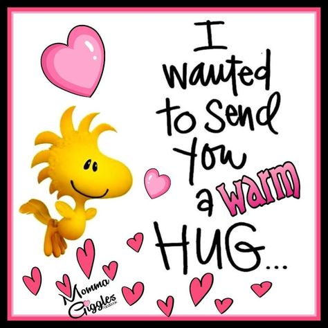 I Wanted To Send You A Warm Hug... Pictures, Photos, and Images for Facebook, Tumblr, Pinterest, and Twitter