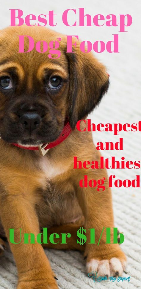 Best Cheap Dog Foods Our Top 10 Picks Of High Quality Brands That Are Still Affordable Under 1 Per Pound In 2019 Cheap Dog Food Best Cheap Dog Food Healthy Dog Food Recipes