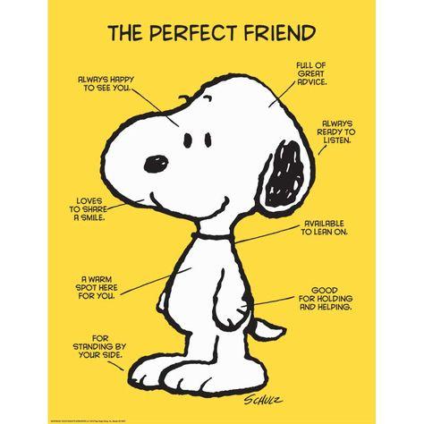 Peanuts The Perfect Friend 17X22 Poster $2.99