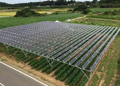 Solar Legume Energy Technology In 2020 Solar Solar Installation Solar Farm