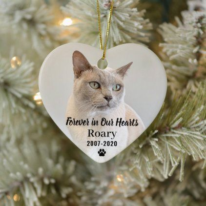 Forever in Our Hearts Pet Memorial Photo Keepsake Ceramic Ornament