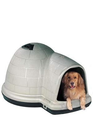 Developing A Large Canine House Free Huge Pet Residence Plans