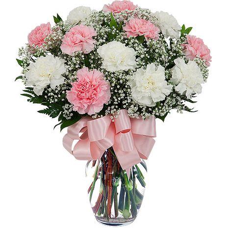 Buy 12 Pink And White Carnation In A Glass Vase To Tokyo City Japan Carnation Flower Flower Arrangements Valentine Flower Arrangements