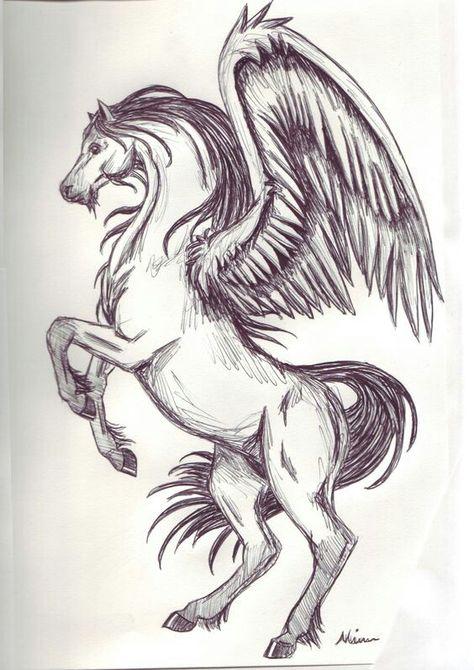 Pin De Nezii Em Drawing Cavalo Alado Desenhos De Fenix