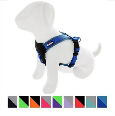Pawtitas Reflective Padded Dog Harness Chewy Padded Dog