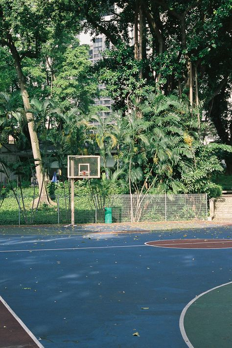 100 Basketball Hoop Ideas Basketball Hoop Basketball Basketball Photography