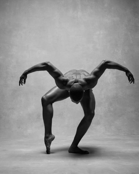 Go Inside The Art Of Movement Pips Dance Art Ballet - Go Inside The Art Of Movement Dancing Drawings Dance Movement Ballet Photos Dance Photos Dance Pictures Dance Photography Portrait Photography Lovely Things Medusa Gillian Murphy Photo B The Human Body, Alvin Ailey, Drawing Reference Poses, Photo Reference, Photos Corps, Black Dancers, Male Ballet Dancers, Dance Project, Human Poses