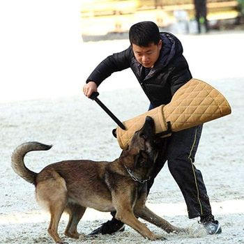 Car Seat Cover Folding Hammock Pet Carriers Bag Shepherd Dog