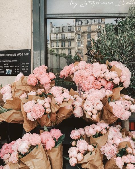 Discovered by L☽ U♆N☽A. Find images and videos about pink, aesthetic and flowers on We Heart It - the app to get lost in what you love. Dark Flowers, Pastel Flowers, Simple Flowers, Vintage Flowers, Yellow Flowers, Beautiful Flowers, Exotic Flowers, Pastel Pink, Spring Flowers