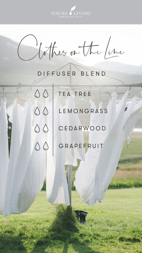 Essential Oils Guide, Essential Oil Uses, Doterra Essential Oils, Young Living Essential Oils, Yl Oils, Essential Oil Diffuser Blends, Living Oils, Natural, Clean House